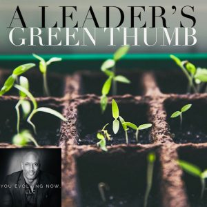a leader's green thumb how to seed, weed, and lead